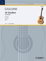 24 Studies, op.100(Zuth) available at Guitar Notes.