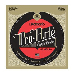 ProArte: EJ45LP Lightly Polished Silver/Clear/Normal Tension available at Guitar Notes.
