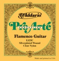 Pro Arte: EJ25C Flamenco available at Guitar Notes.