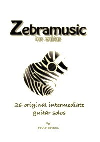 Zebramusic available at Guitar Notes.